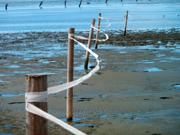 schlick_watts_ebb_flood_watt_hike_wadden_sea_north_sea_water-568370